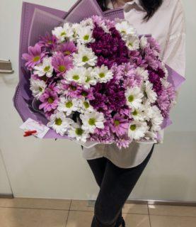 букет из кустовой хризантемы белого , лилового, фиолетового цвета