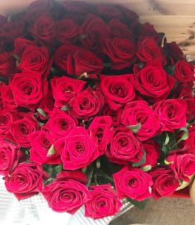 65 алых роз на длинной ножке