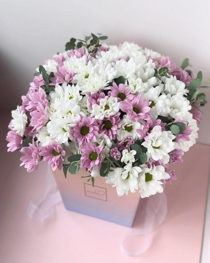 Хризантемы в коробке